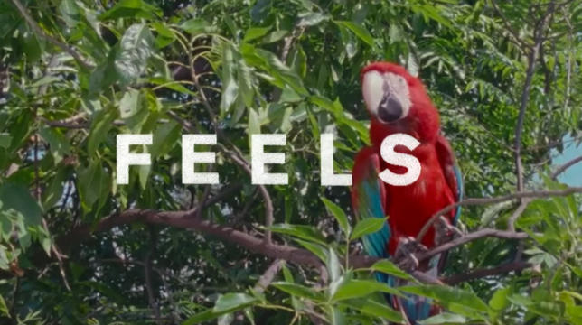 feels ft pharrell williams katy perry big sean audio preview