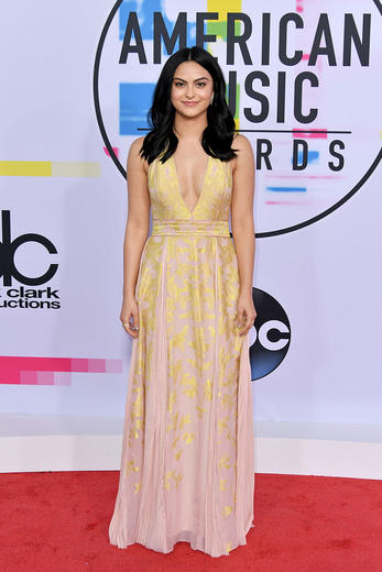 Best Dressed at the 2017 American Music Awards with Demi Lovato, Selena Gomez and more