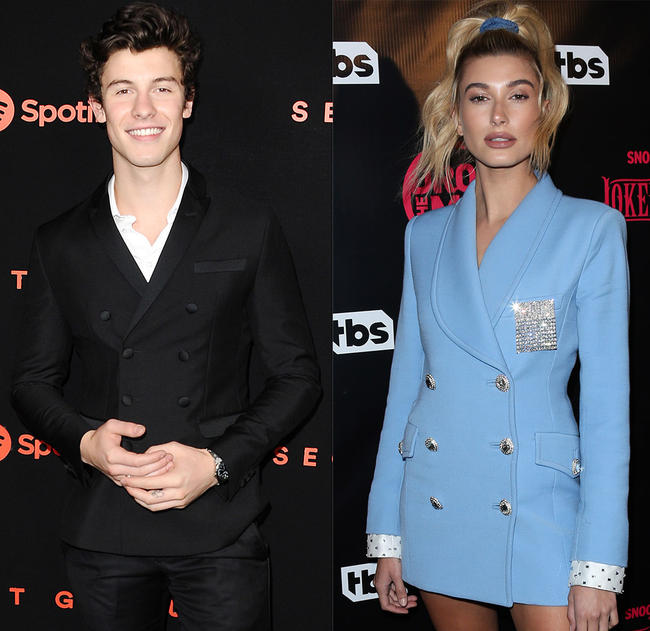 Shawn Mendes and Hailey Baldwin are rumoured to be dating.