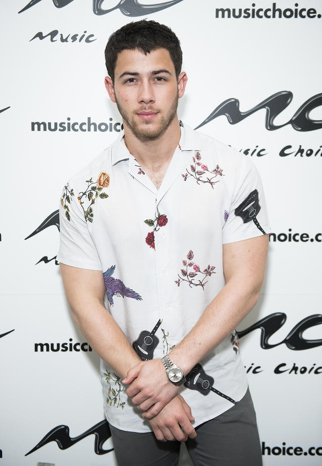 Nick Jonas makes an appearance in 2017