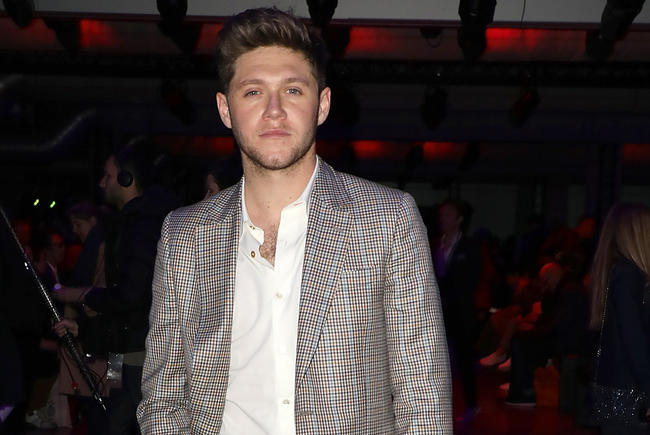 Did Niall Horan vote no on Instagram when a fan asked if they should date?