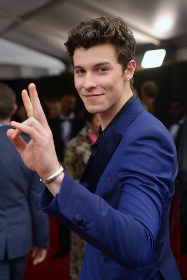 Shawn Mendes reveals who would win a fight between him and Justin Bieber